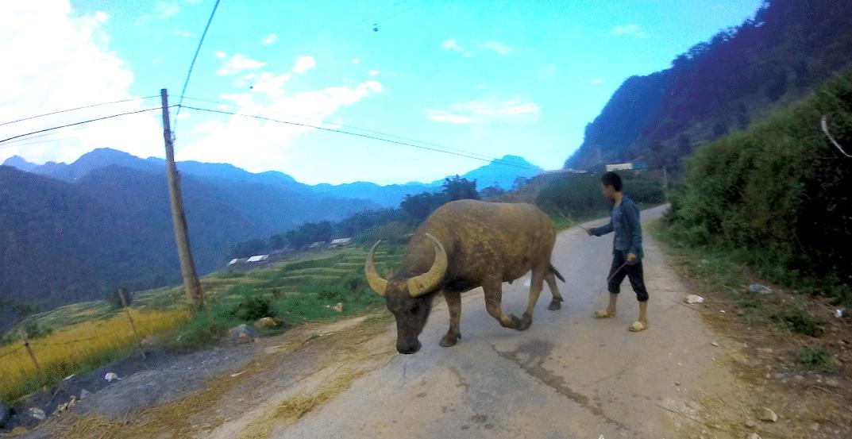 Bildschirmfoto 2016 10 28 um 18.12.50 - Marcel Höche: Durch den Regenwald Vietnams