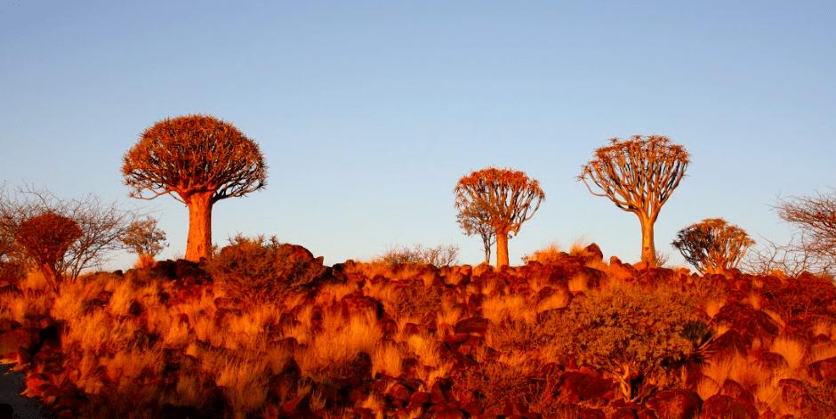 namibia_ninakunkelmann2
