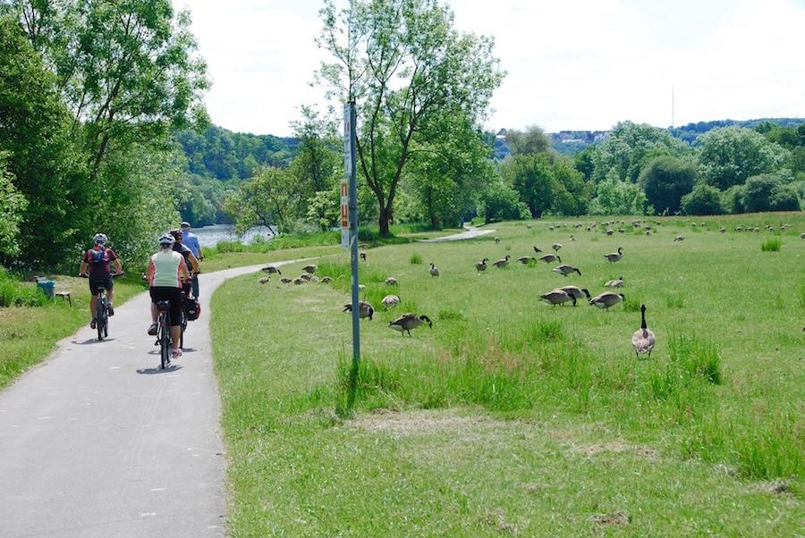 radrevier ruhr radtour - Radtour Ruhrgebiet - Tour im Radrevier Ruhr