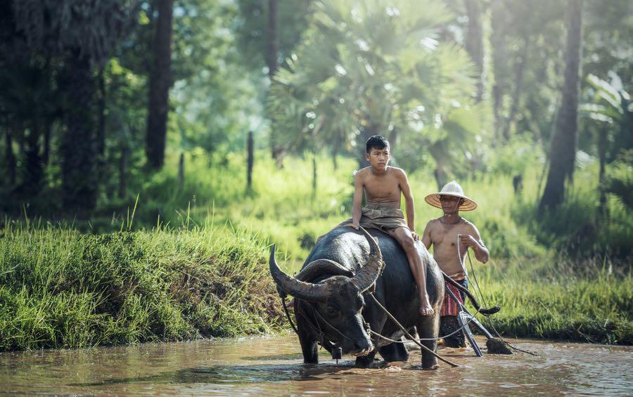 umweltfreundlich reisen nachhaltig reisen6 - Umweltfreundlich reisen - geht das wirklich?