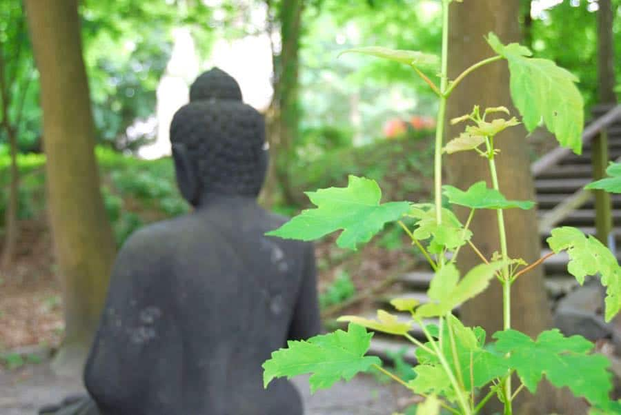 buddhistischer zen garten nrw 8 - Ein buddhistischer Zen-Garten in NRW