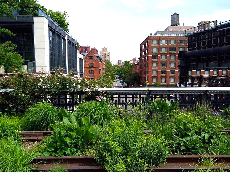 high line new york view - Amerika