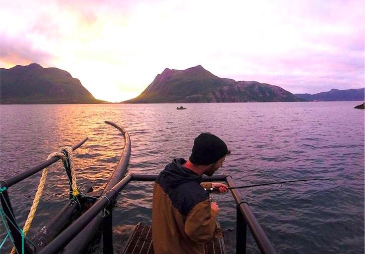 farmarbeit norwegen - Farmarbeit: Work and Travel in Norwegen