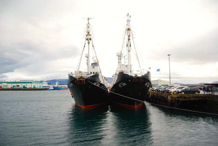 island reykjavik tipps 8 - Island Tipps: Sehenswürdigkeiten in Reykjavik