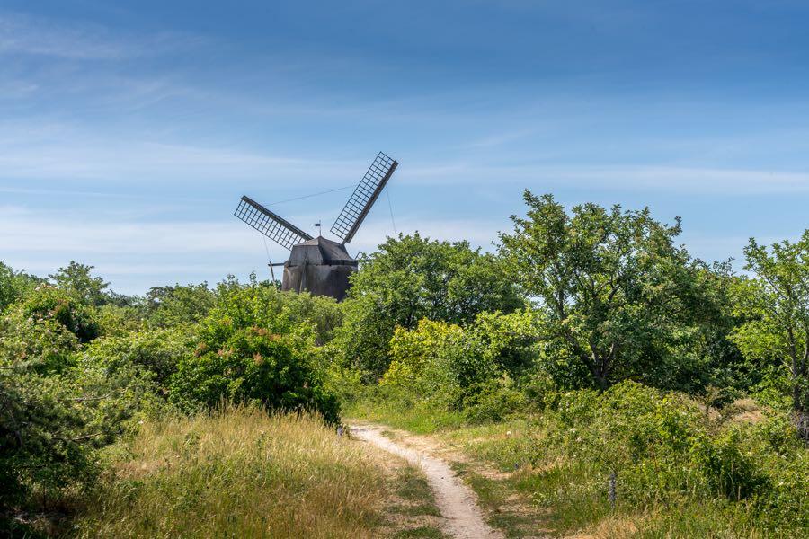 gotland schweden 3 - Schweden Tipps: Gotland und Visby entdecken