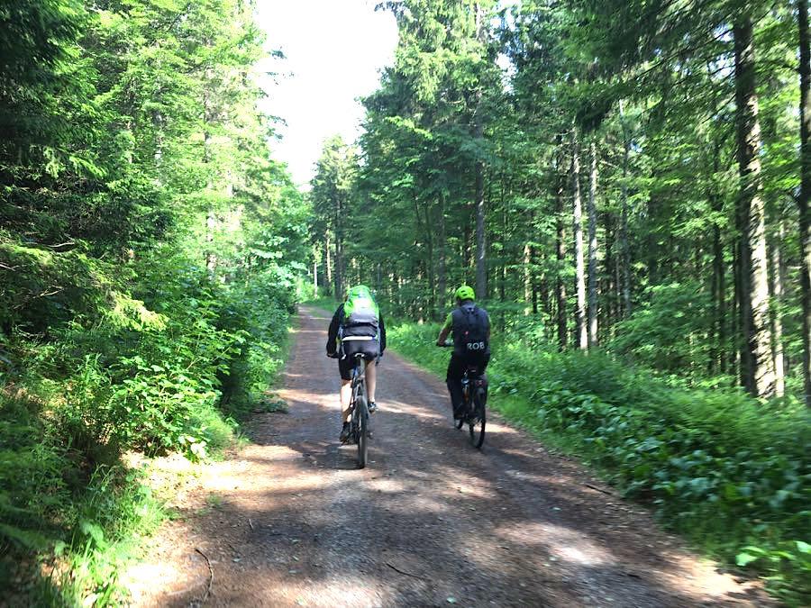 mountainbiken schwarzwald 2 - Die Outdoor-Region Belchen im Schwarzwald