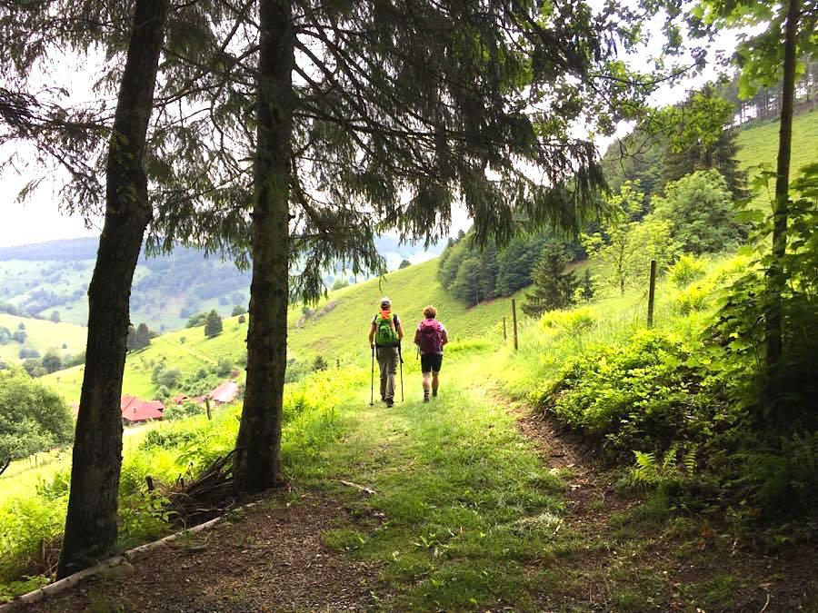 Kurzurlaub Deutschland Schwarzwald