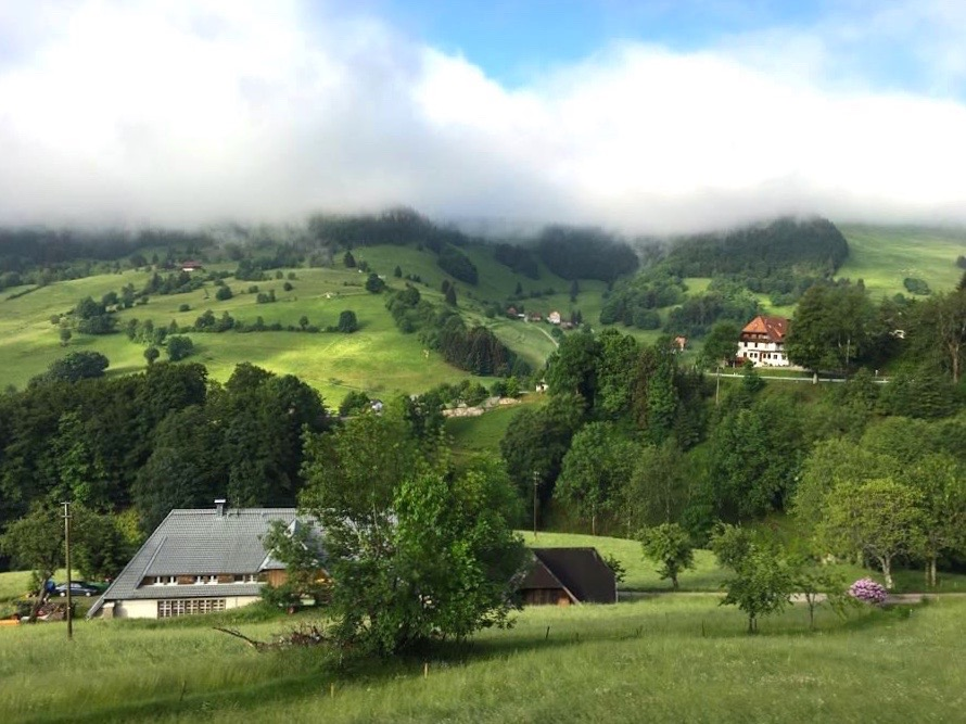 schwarzwald belchen 8 - Belchen: Wandern in der Schwarzwald-Region