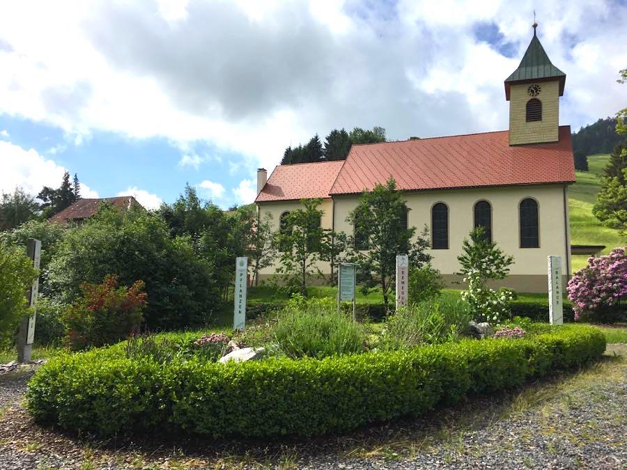 schwarzwald wieden 1 - Belchen: Wandern in der Schwarzwald-Region