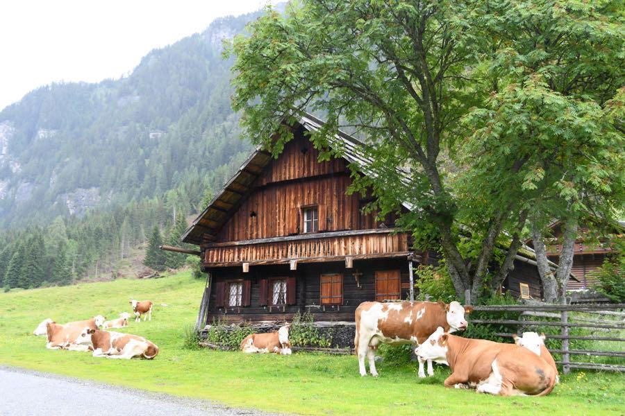 Kärnten Bauernhaus Pöllatal