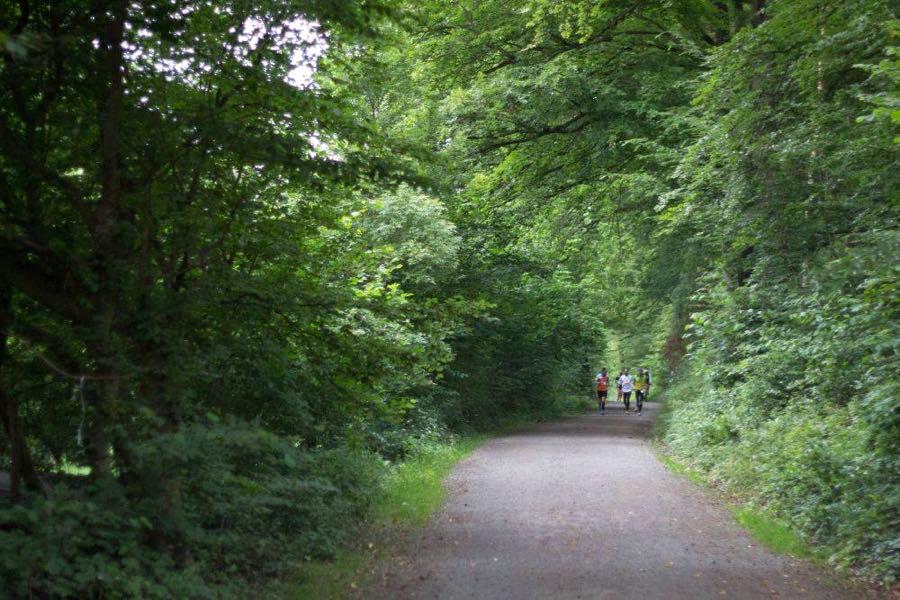 laufen running - Outdoor Adventure: Mein erster Ultralauf