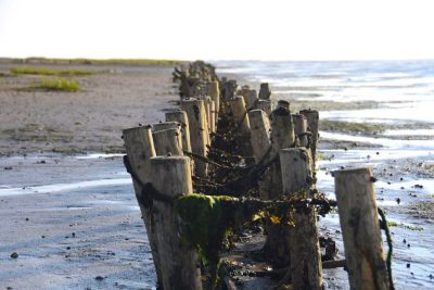 Nordsee: Tipps für deinen Dänemark Urlaub