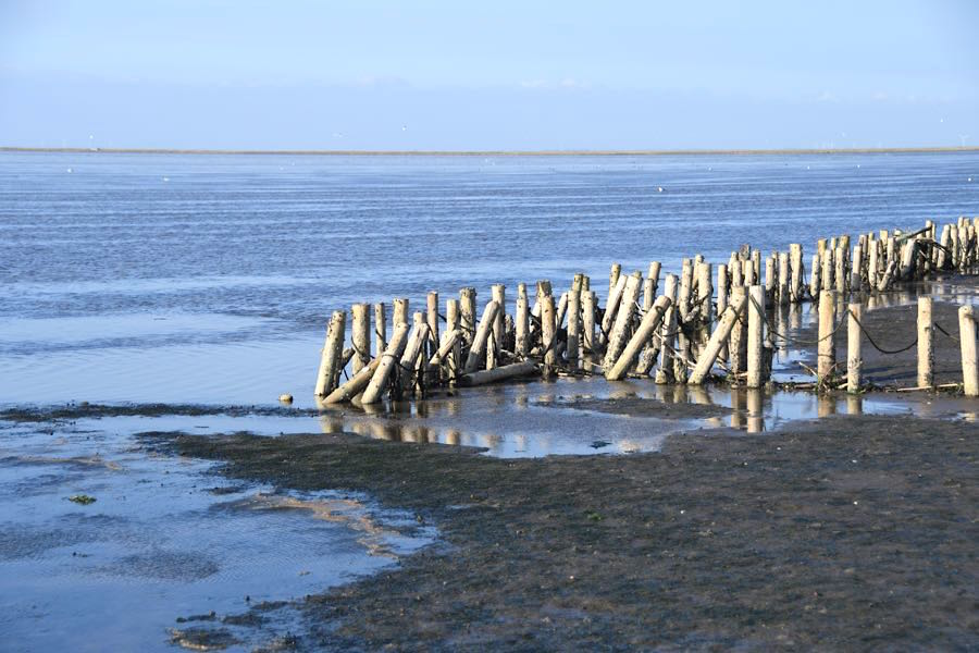 Dänemark Nordsee