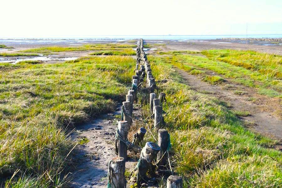 Dänemark Wattenmeer Nordsee