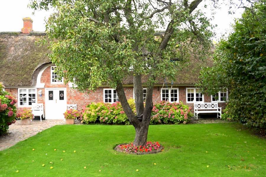 daenemark urlaub ferienhaus 16 - Fanö in Dänemark: Urlaub in einem Ferienhaus