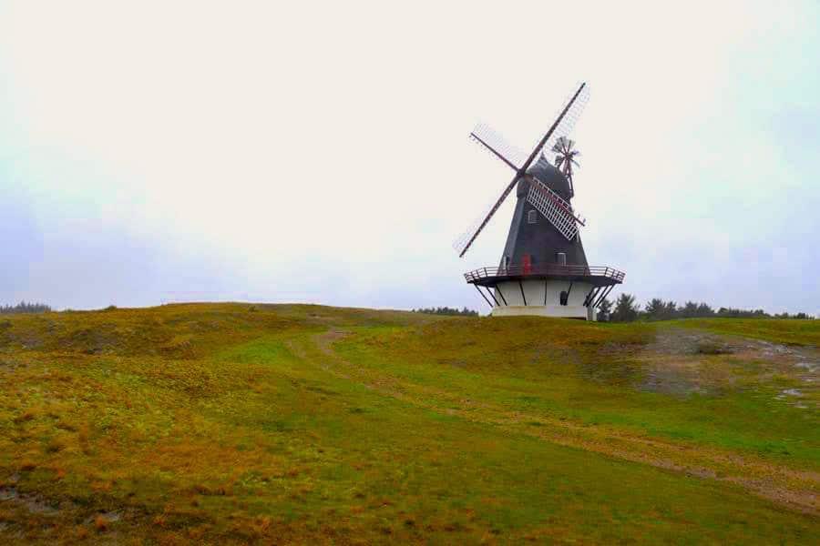 fanoe urlaub ferienhaus 12 - Fanö in Dänemark: Urlaub in einem Ferienhaus