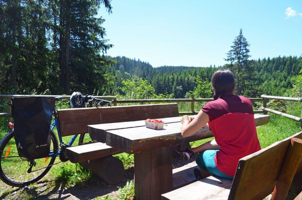 radrouten deutschland 4 - Radtouren Deutschland: Fahrradwege im Test