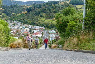 Neuseeland Rundreise – im Land der Kiwis