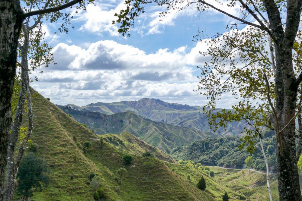 neuseeland rundreise 417 - Neuseeland Rundreise - im Land der Kiwis