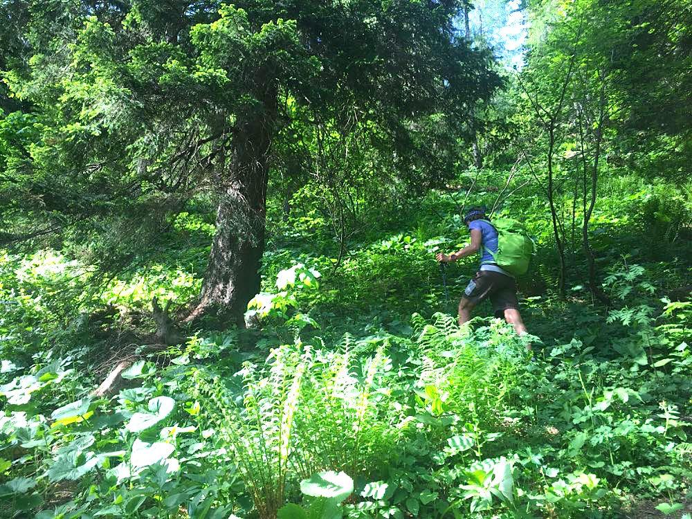 karawanken 21 - Karawanken: Wandern in der Region Rosental