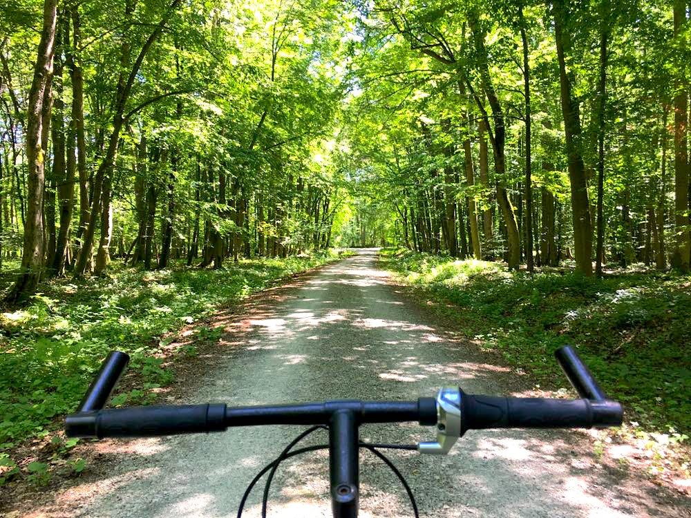 Nationalpark Hainich Wandern Radfahren
