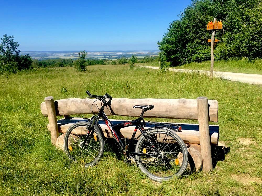 nationalpark hainich 18 - Nationalpark Hainich: Wandern & Biken im Wald
