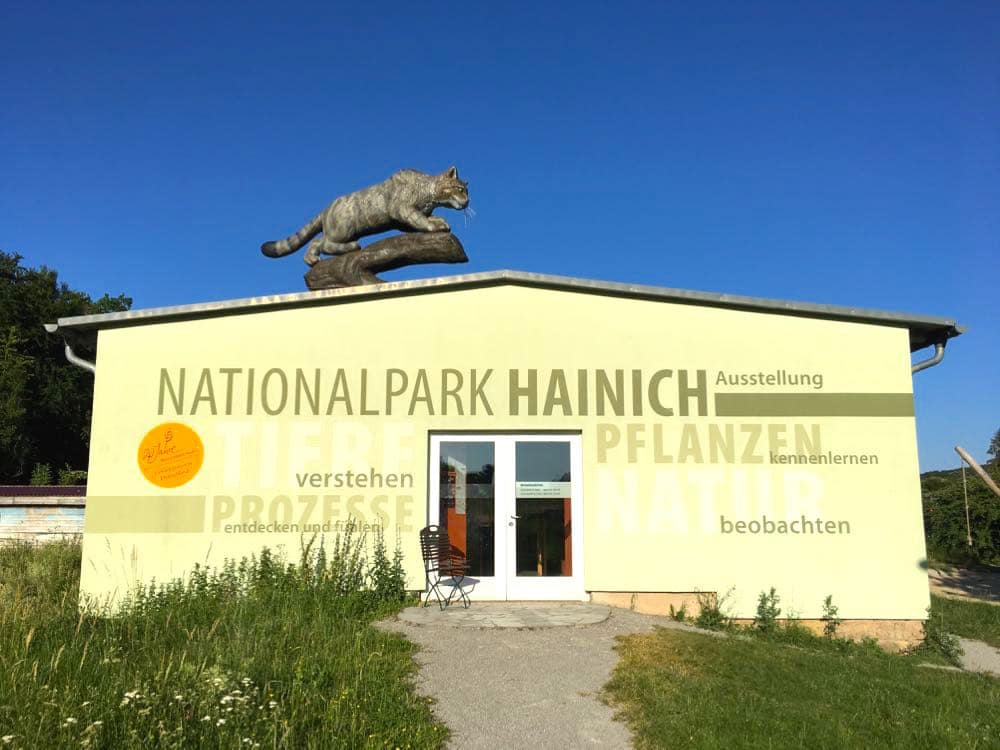 Jugendherberge Hainich Urwald Life Camp