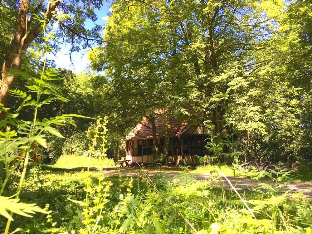 nationalpark hainich - Nationalpark Hainich: Wandern & Biken im Wald
