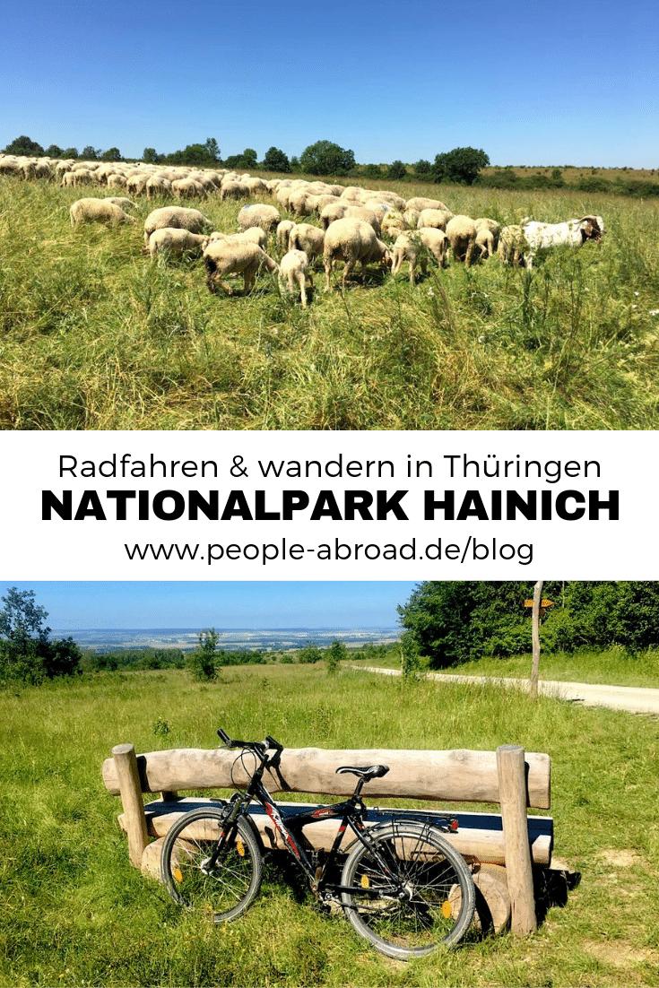 Werbung / Radfahren und wandern im Nationalpark Hainich #Nationalpark #Reiseinspiration #Deutschland #Thüringen #Reise