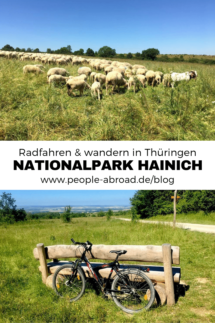 134 - Nationalpark Hainich: Wandern & Biken im Wald