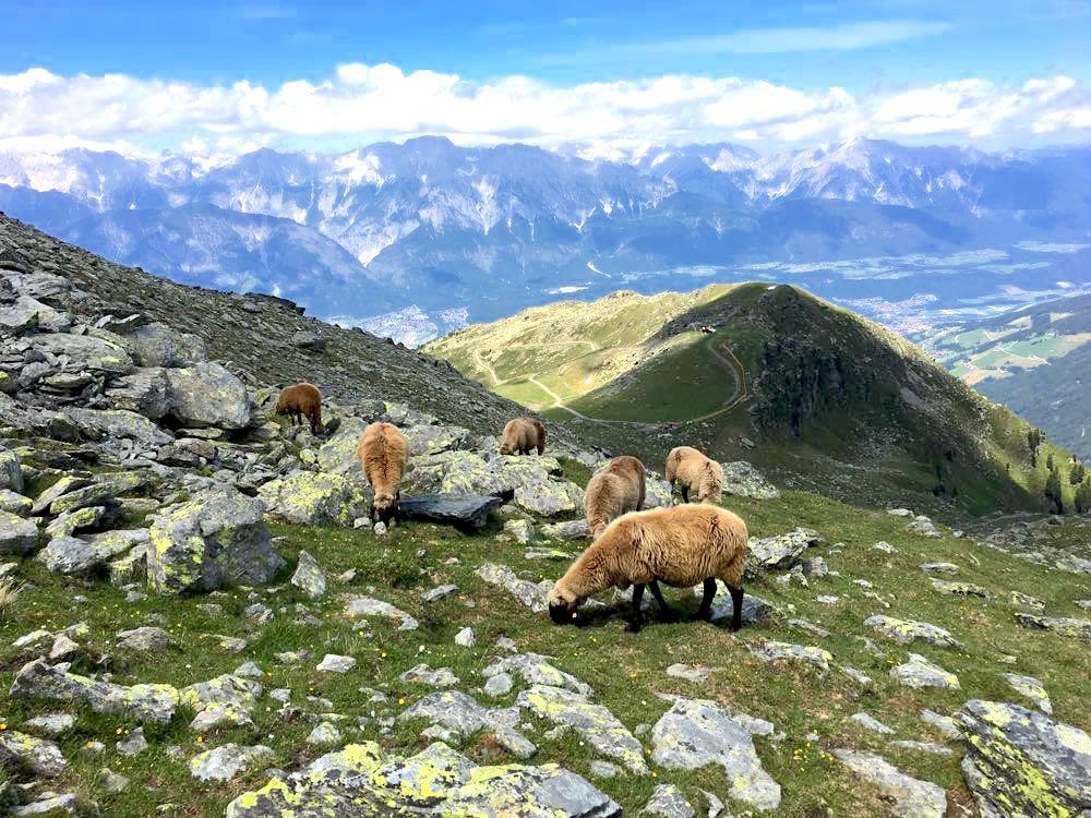 Tuxer Alpen Österreich