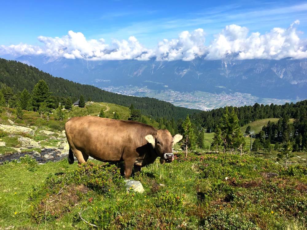 Inntal Hall-Wattens Tuxer Alpen Österreich
