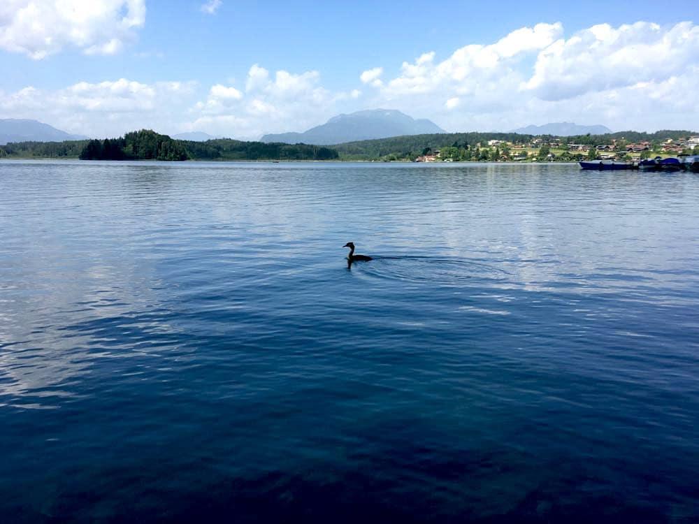 villach faaker see kaernten 34 - Region Villach: 10 Tipps für den Faaker See