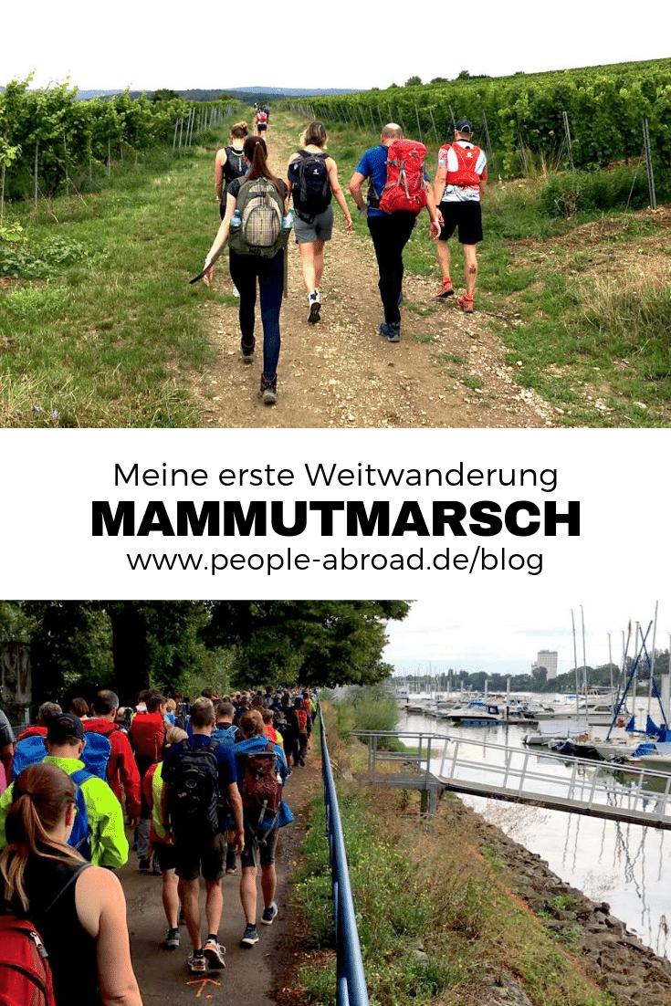 Werbung / Meine erste Weitwanderung beim Little Mammutmarsch #Mammutmarsch #Weitwandern #Wandern #Wandermarathon #Marsch