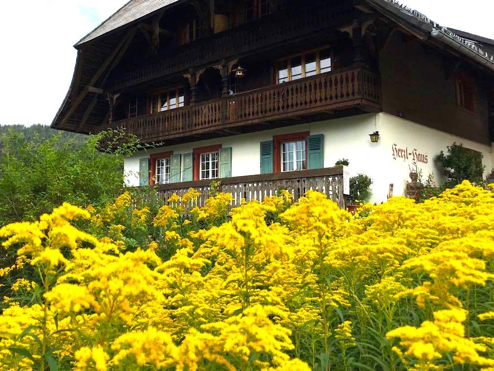 Hochschwarzwald: Lebküchlerweg & Geißenpfad