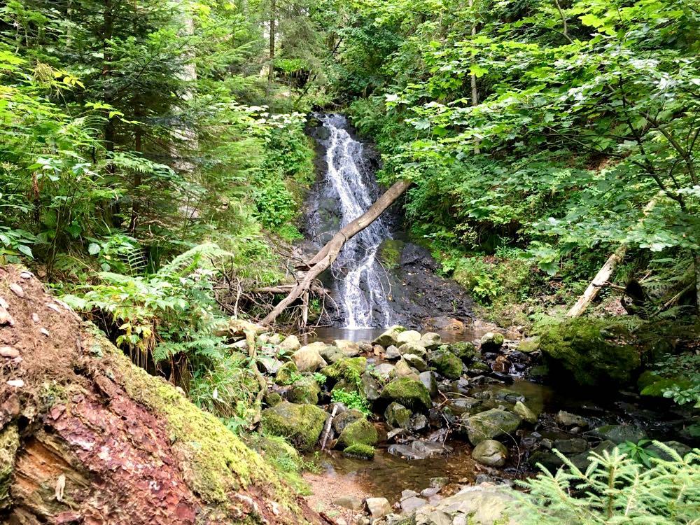 Hochschwarzwald Lebküchlerweg Wandern Aktivreise Schwarzwald