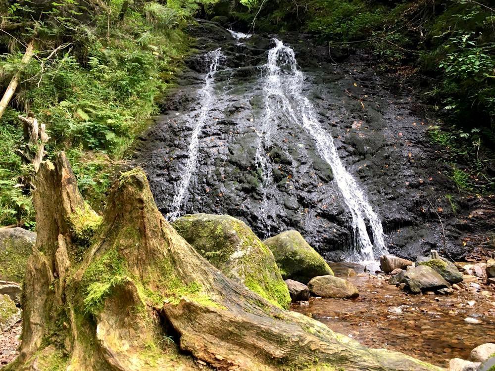 Hochschwarzwald Lebküchlerweg Todtmooser Wasserfall