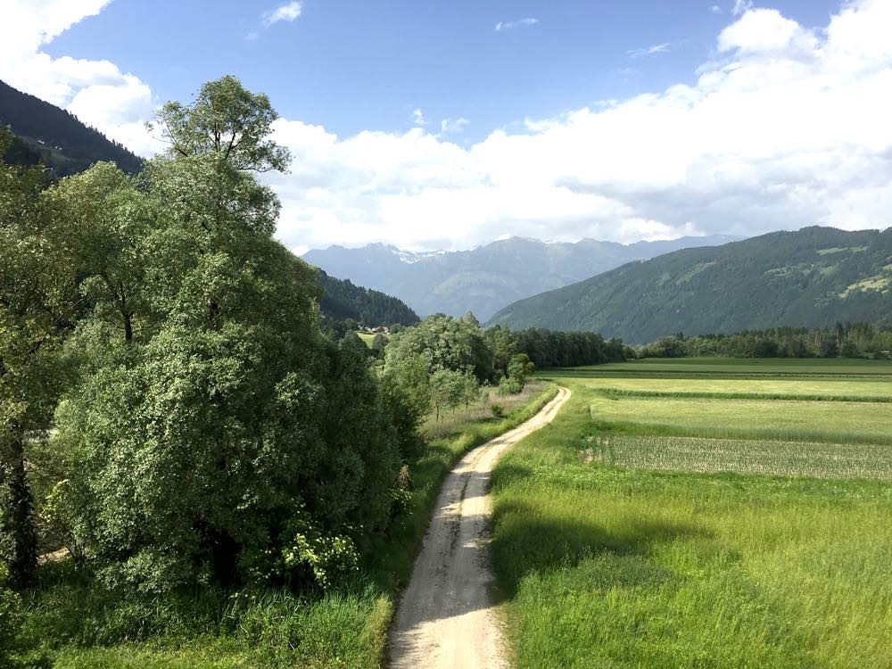 kanufahren paddeln kaernten drau 13 - Kanufahren auf der Drau in Kärnten
