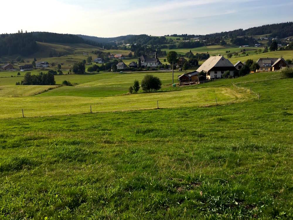 suedschwarzwald wandern ibacher panroamaweg 10 - Südschwarzwald: Wandern mit Blick auf Ibach