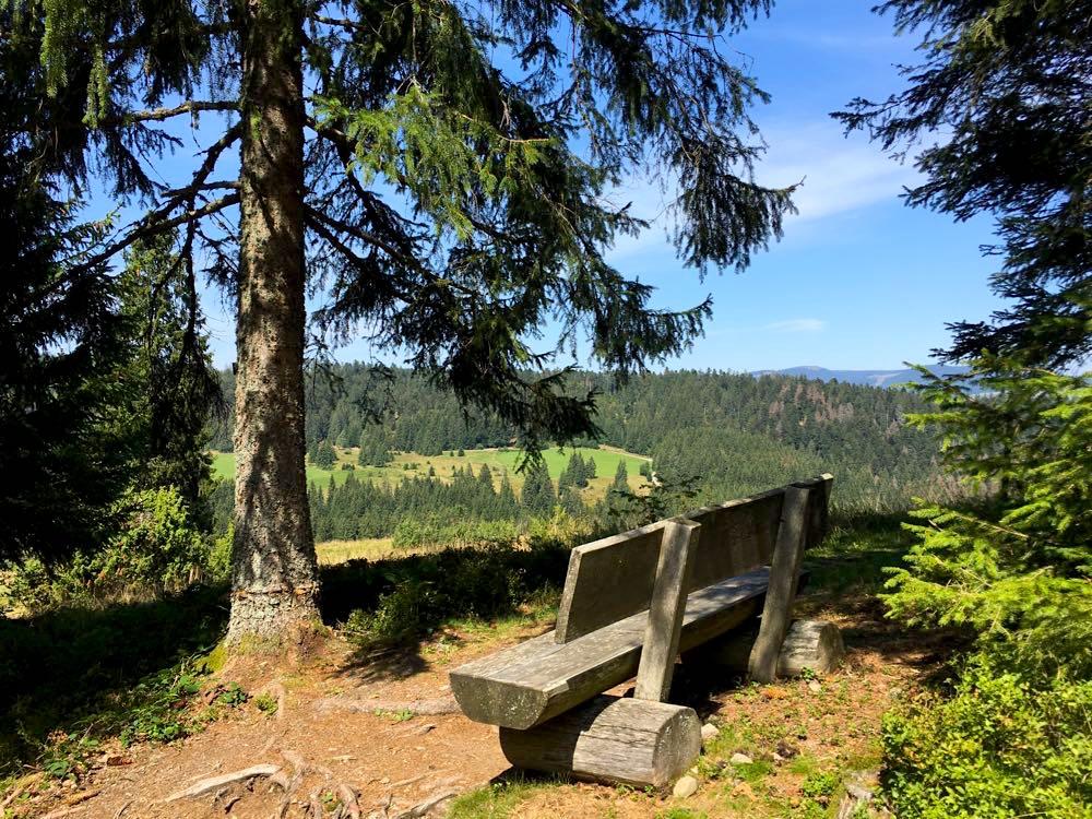 suedschwarzwald wandern ibacher panroamaweg 15 - Südschwarzwald: Wandern mit Blick auf Ibach