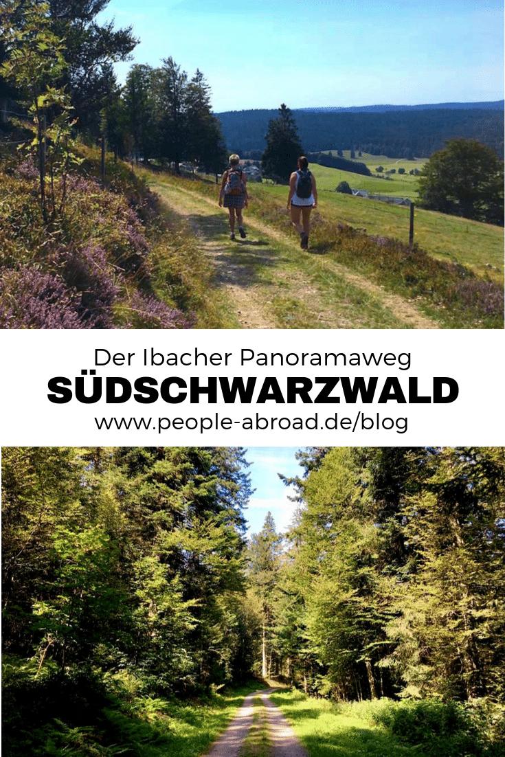 144 - Südschwarzwald: Wandern mit Blick auf Ibach
