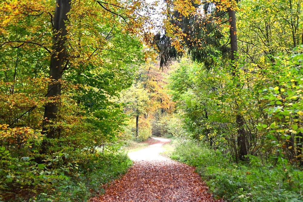 5-Seidla-Steig Frankenweg Fränkische Schweiz Wandern