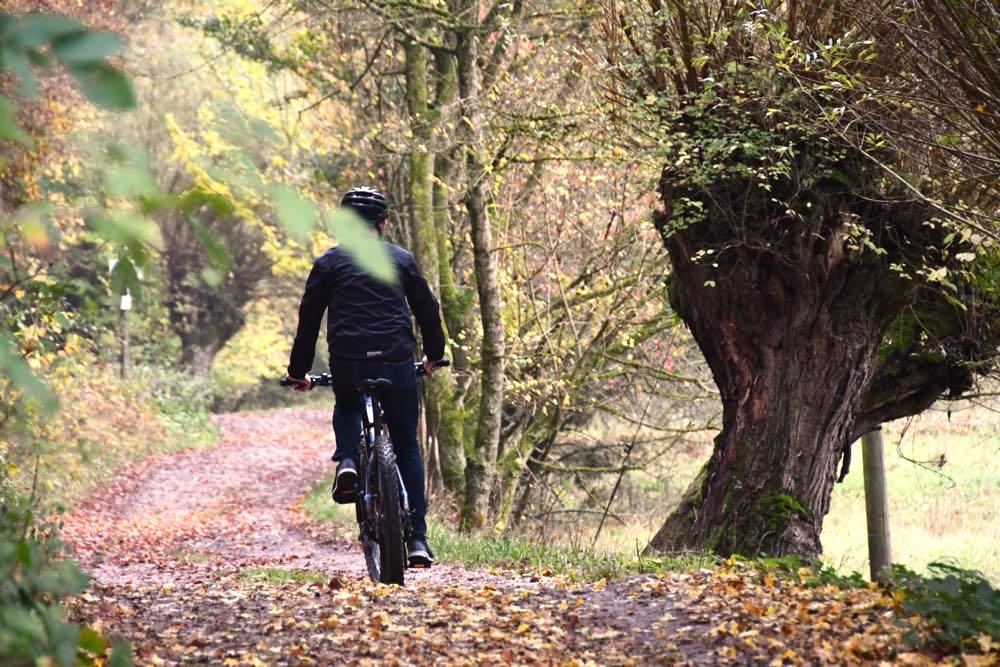 Fränkische Schweiz Biken Mountainbiken E-Bike