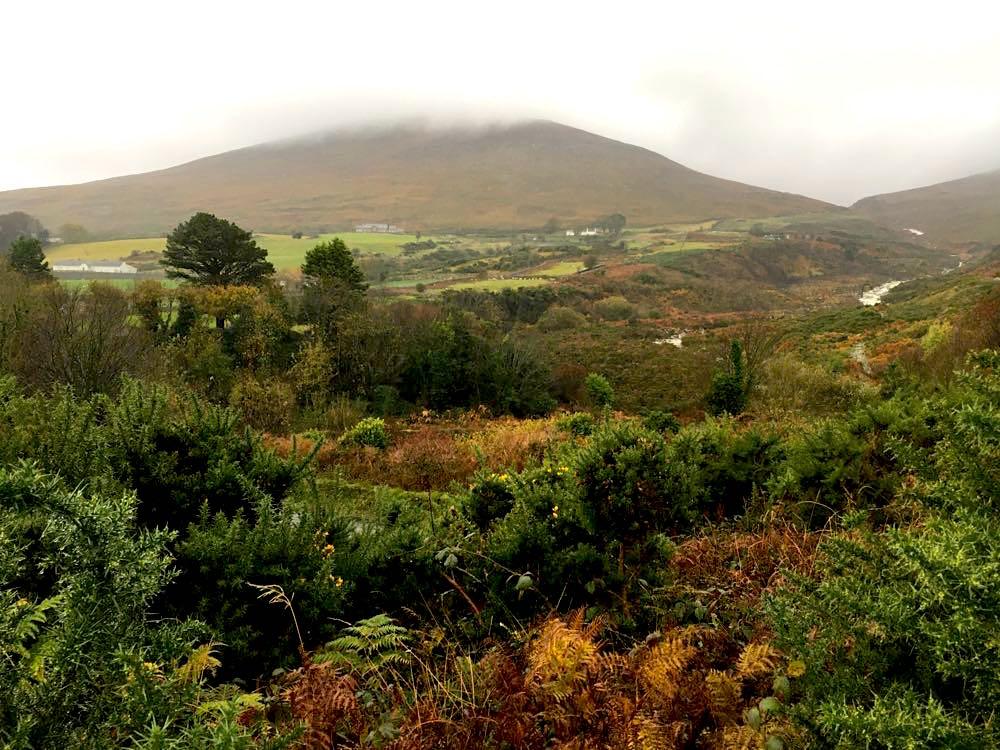 nordirland sehenswürdigkeiten tipps 4 - Nordirland: Sehenswürdigkeiten & Tipps