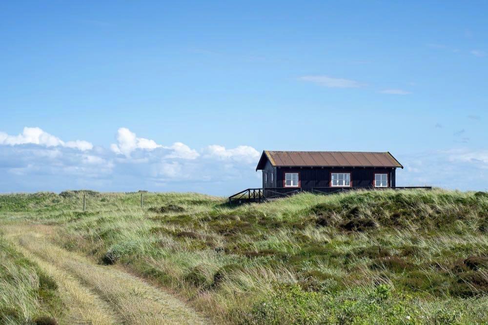 naturhaeuschen ferienhaus daenemark 3 - Naturhäuschen: Dänemark-Urlaub im Ferienhaus