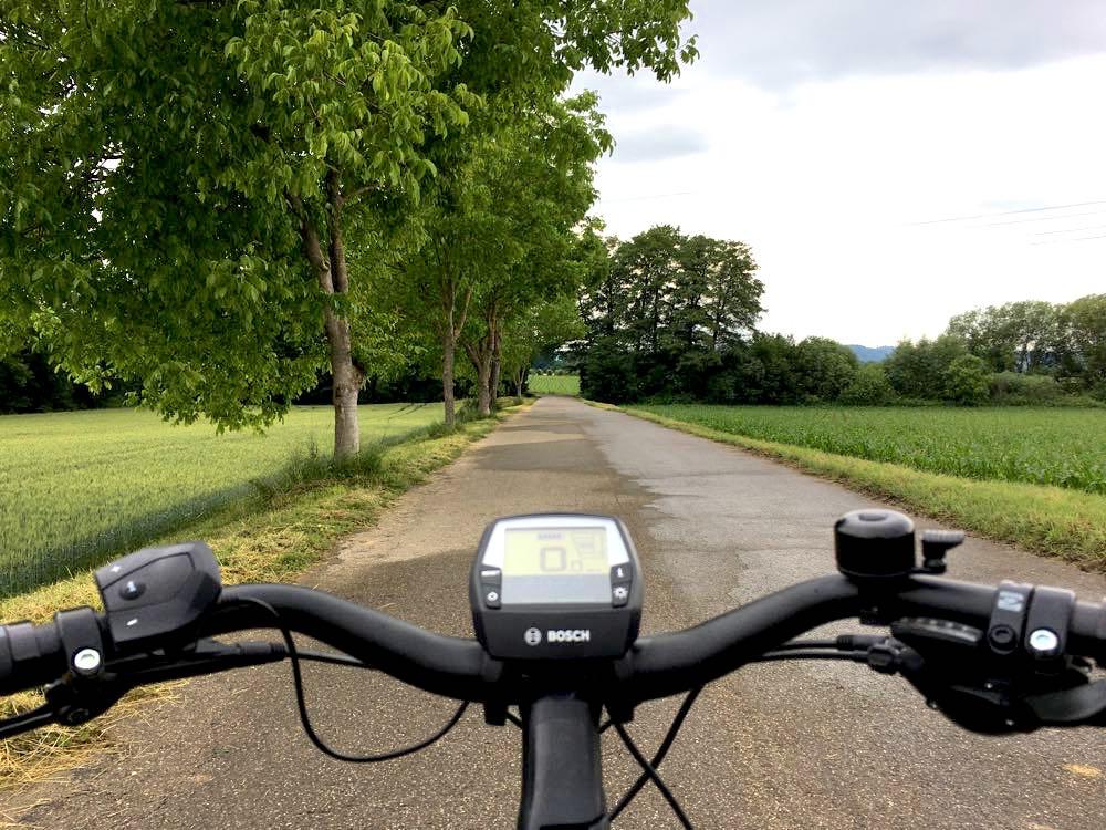 badischer weinradweg 16 - Badischer Weinradweg: Hügel, Reben & Genuss