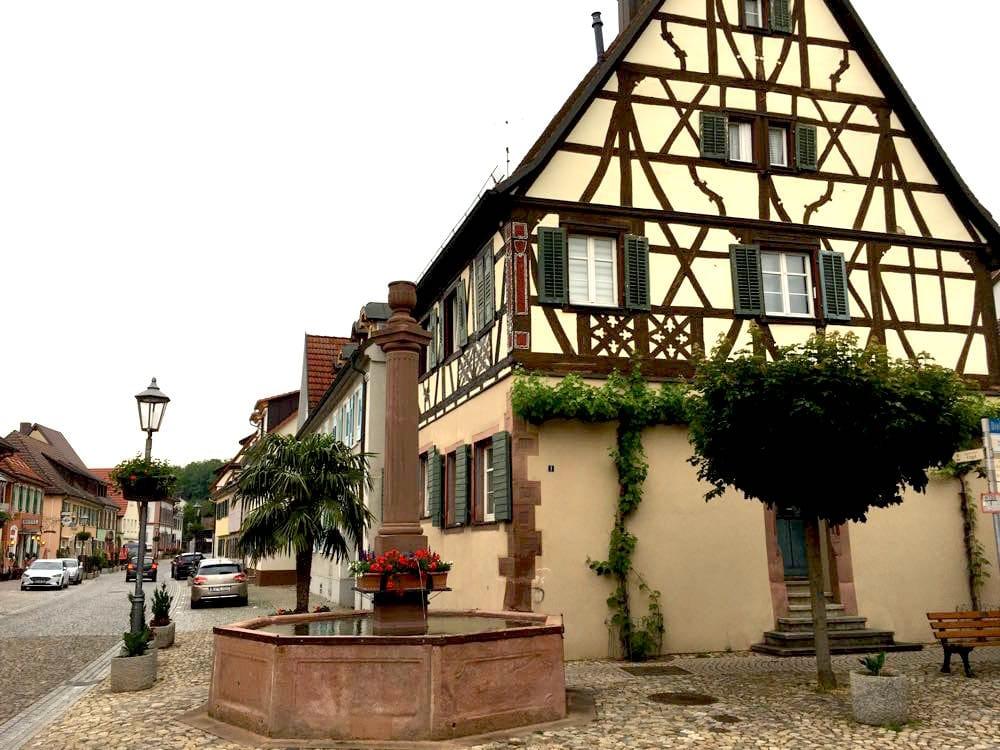 badischer weinradweg 23 - Badischer Weinradweg: Hügel, Reben & Genuss