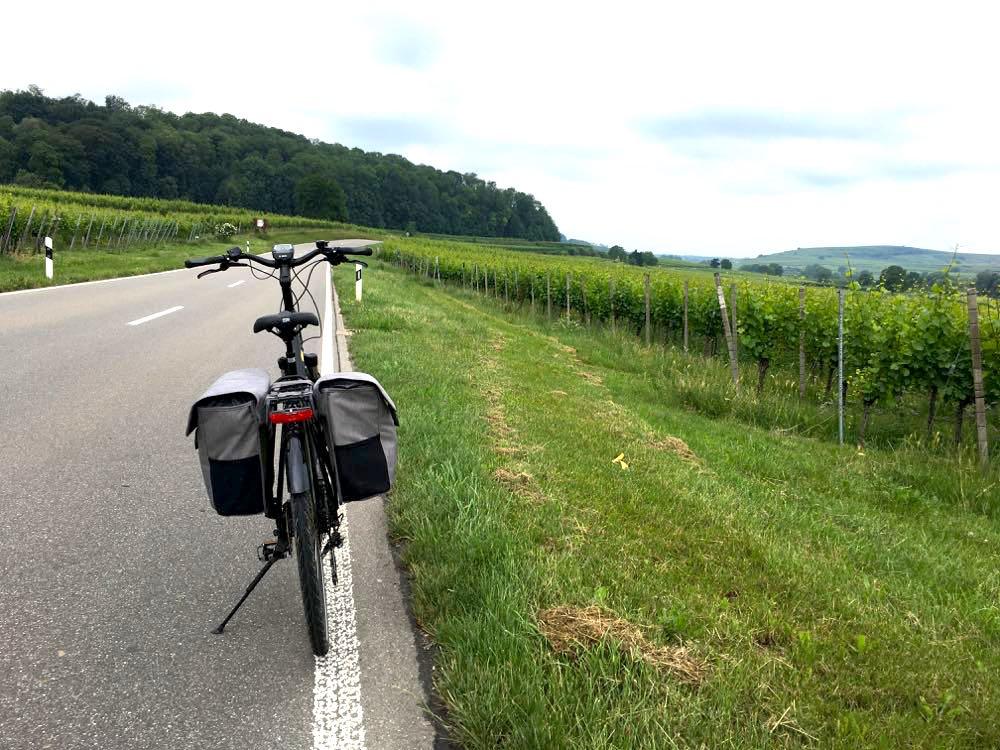 badischer weinradweg 25 - Badischer Weinradweg: Hügel, Reben & Genuss