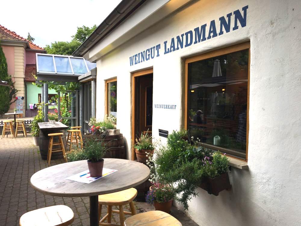 badischer weinradweg 7 - Badischer Weinradweg: Hügel, Reben & Genuss