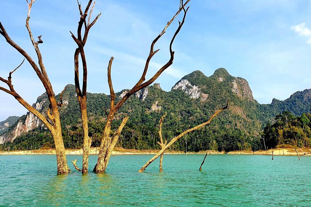 khao sok nationalpark thailand 7 - Der Khao Sok Nationalpark in Thailand